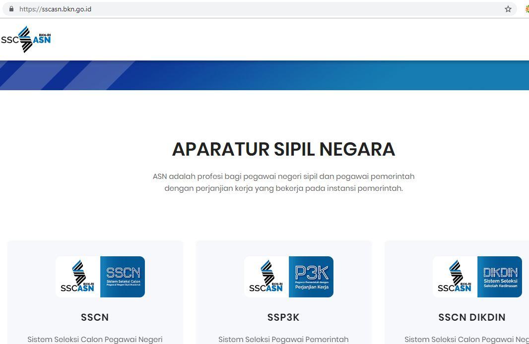 hasil seleksi administrasi pppk p3k
