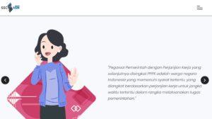 info pppk p3k 2019