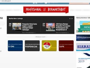 info terbaru pppk p3k bkn